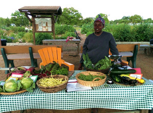 PIF Farm Stand