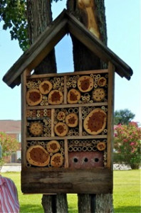 This luxury bee condo is prime real estate for our native bees to call home. Solitary bees lay their eggs in the nooks and crannies.
