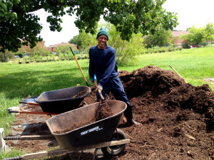 Bill kept 6 wheelbarrows full of mulch.