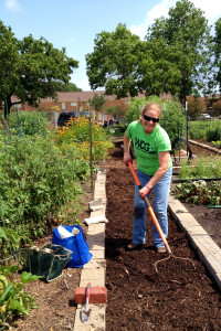Cindy rakes the mulch smooth in the weed-free aisles.