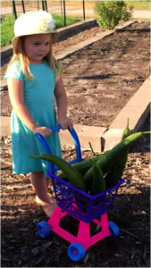 Granddaughter with basket of loofahs