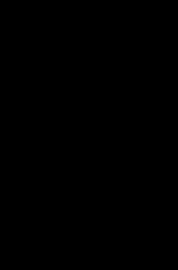 eggplant, outline